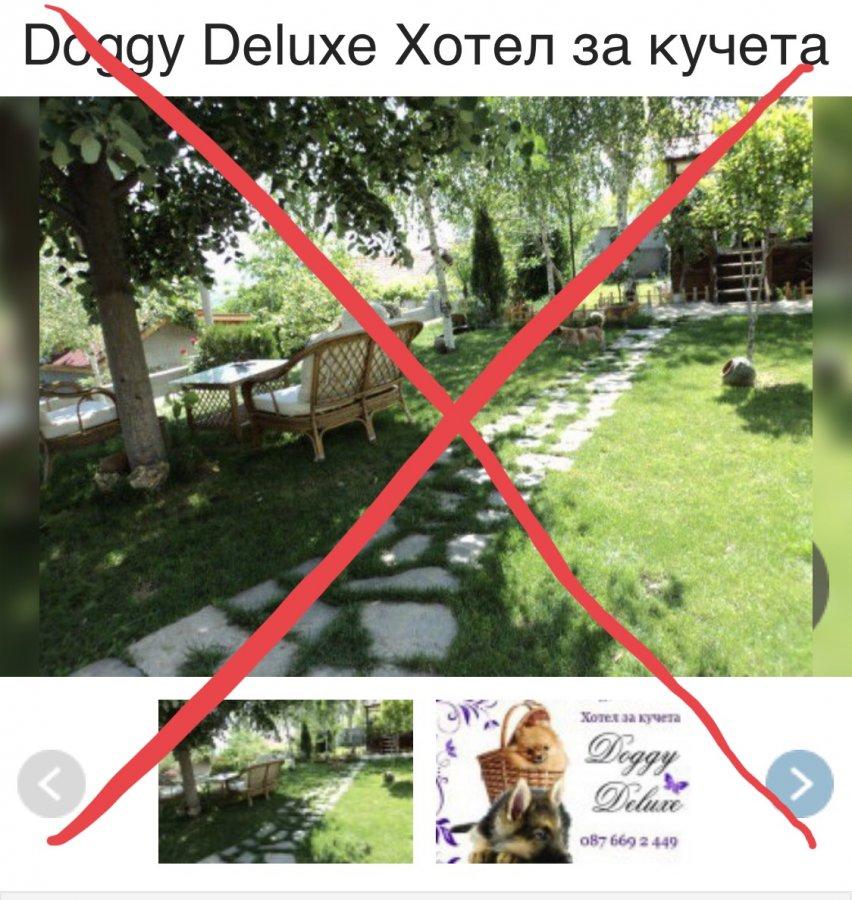 Жалоба-отзыв: Doggy deluxe xotel - Doggy deluxe гибель собаки, вину отрицают.  Фото №1